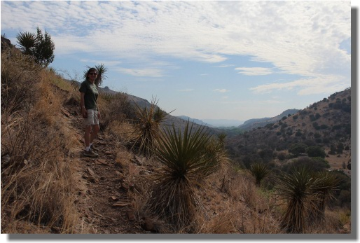 The Montezuma Quail Trail