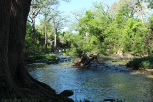 McKinney Falls Onion Creek Upstream